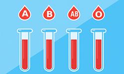 輸血検査イラスト
